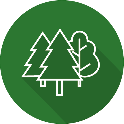 icon forêt