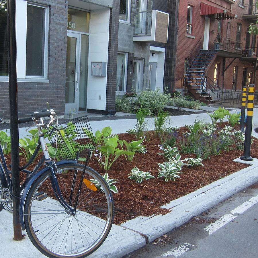 Le végétal, le partenaire oublié des infrastructures urbaines