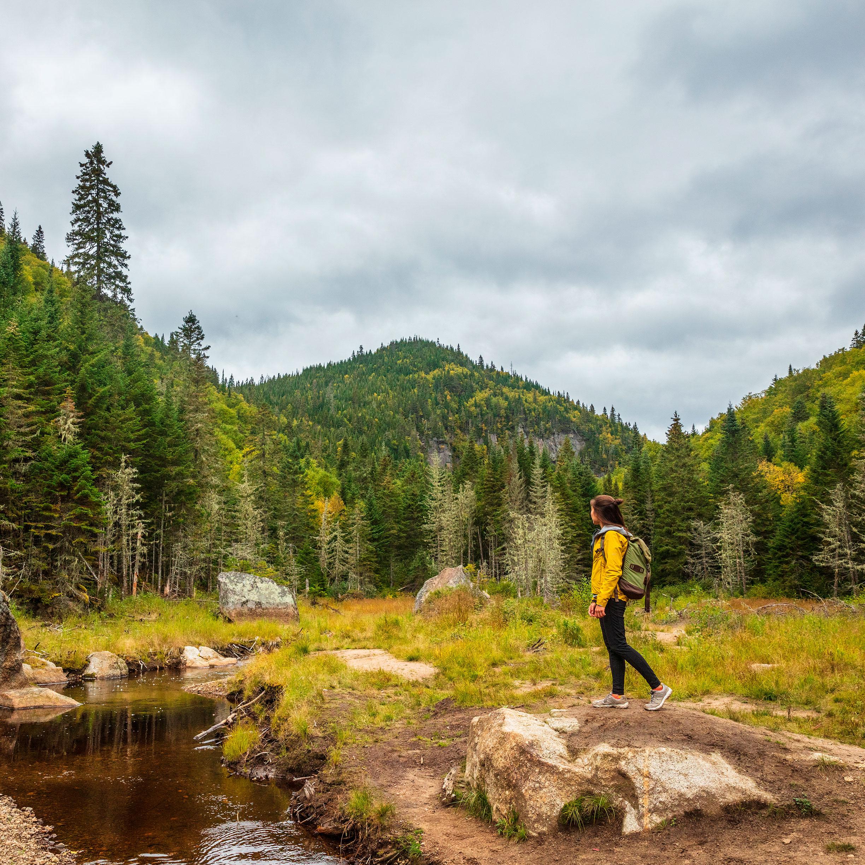 Communiqué -  Nature Québec demande la réouverture des parcs nationaux