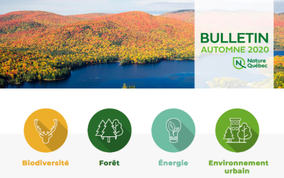 Bulletin d'automne - samedi 3 octobre 2020
