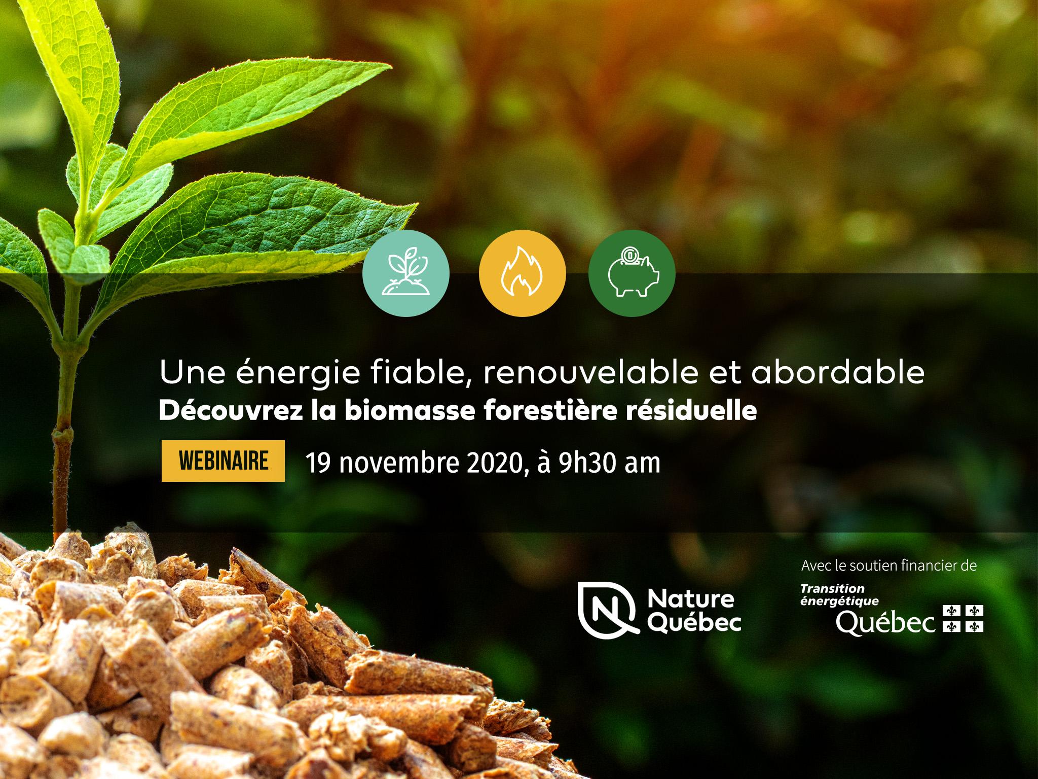 """Entête pour le webinaire """"Une énergie fiable, renouvelable et abordable - découvrez la biomasse forestière"""""""