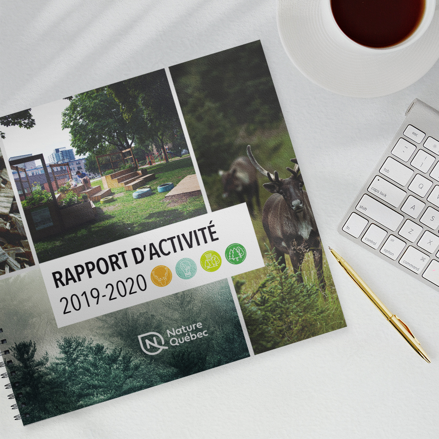 Le nouveau rapport d'activité 2019-2020 est disponible!