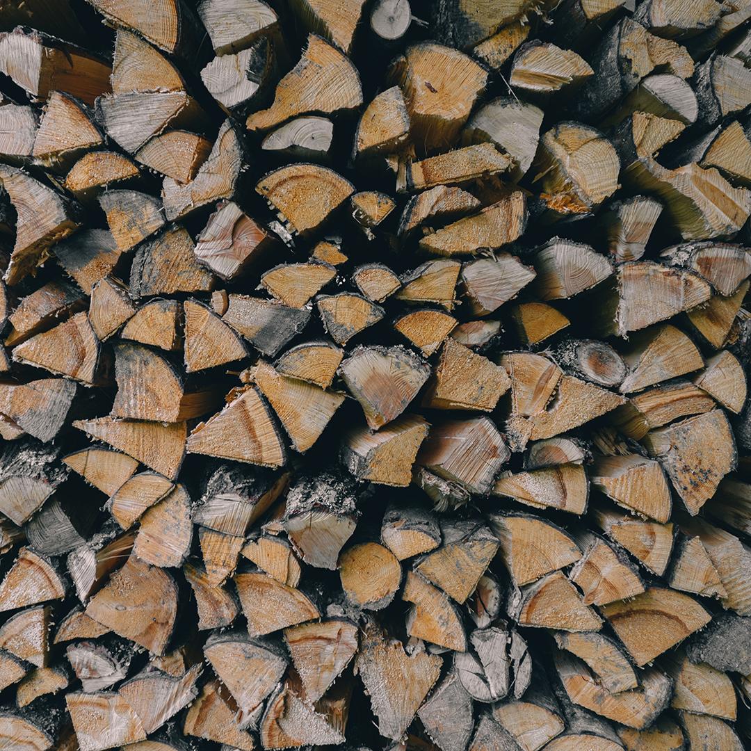 Coup de balai nécessaire au ministère des Forêts, de la Faune et des Parcs