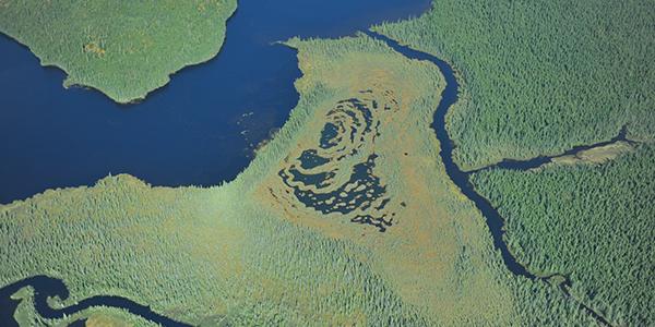 Ya'nienhonhndeh : Un projet d'aire protégée autochtone et une forêt vierge dans la région de Québec