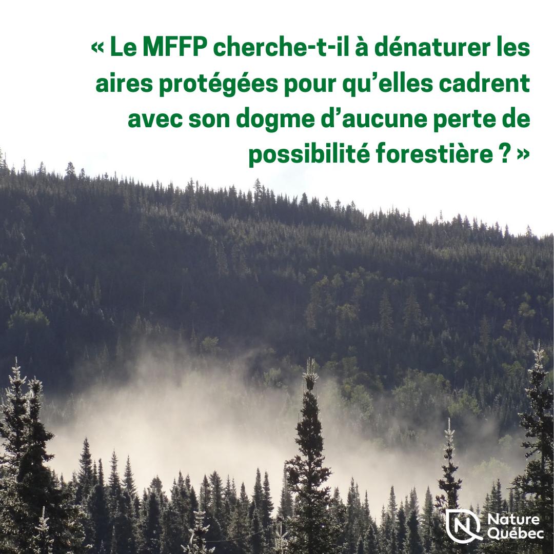 Communiqué - Le ministre des Forêts cherche à dénaturer la nouvelle catégorie d'aire protégée d'utilisation durable pour qu'elle cadre avec son dogme, dénonce Nature Québec
