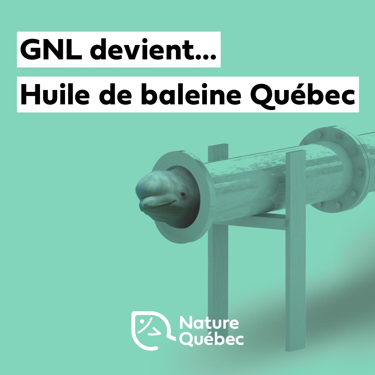 Communiqué - Tournant le dos au gaz, le projet GNL devient  Huile De Baleine Québec