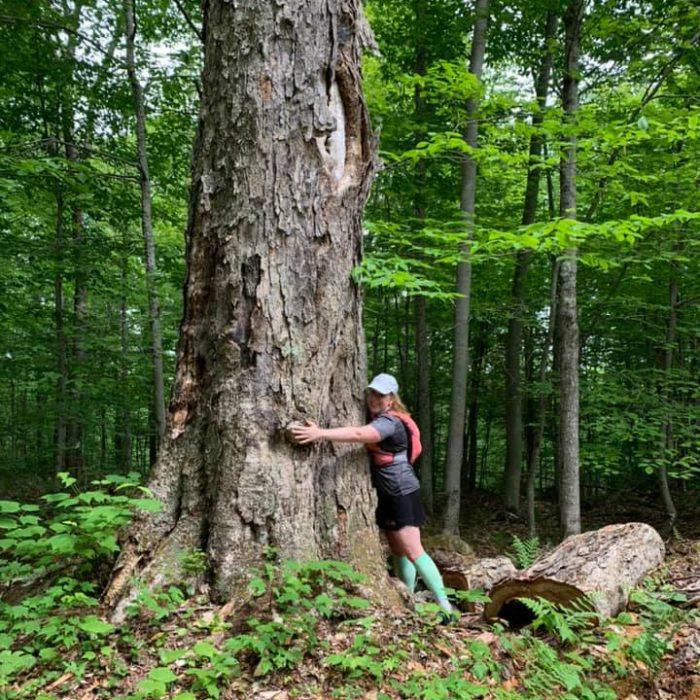Sentier du coureur des bois