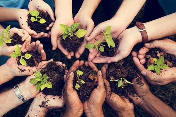 Faire un don pour l'environnement