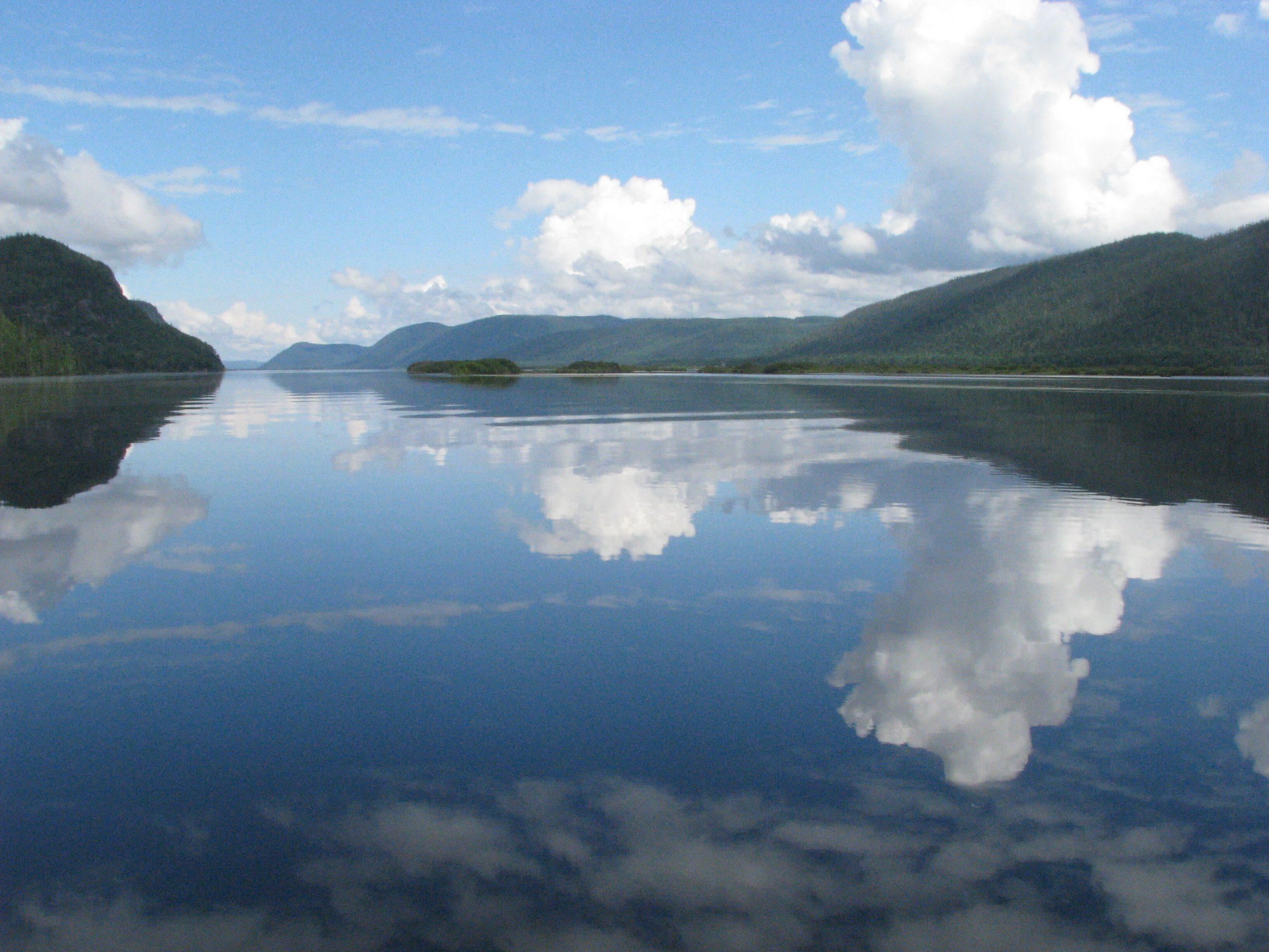 Communiqué - Nature Québec dénonce les propos inquiétants du ministre des Forêts dans le dossier des aires protégées