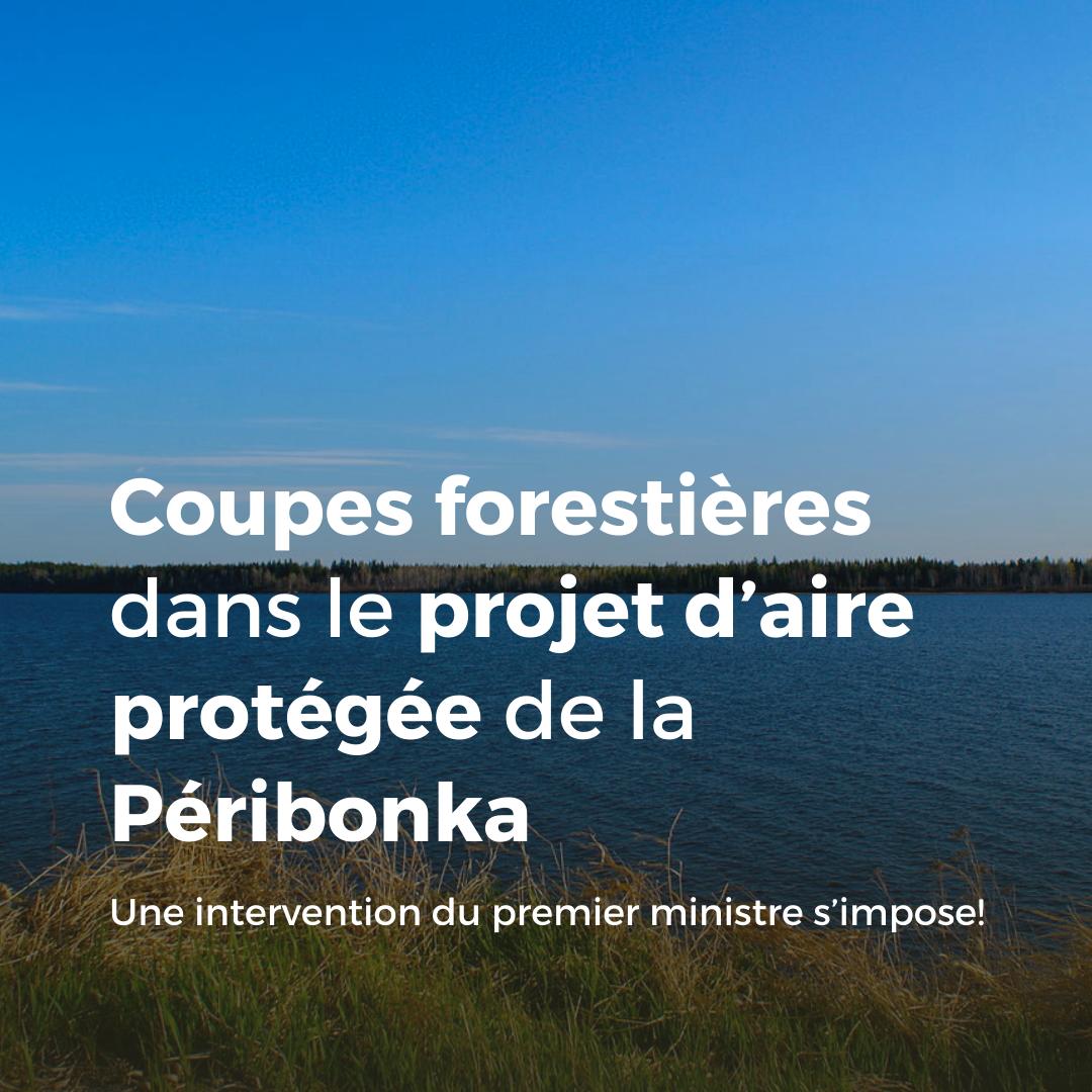 Communiqué - Coupes forestières dans le projet d'aire protégée de la Péribonka : une intervention du premier ministre s'impose
