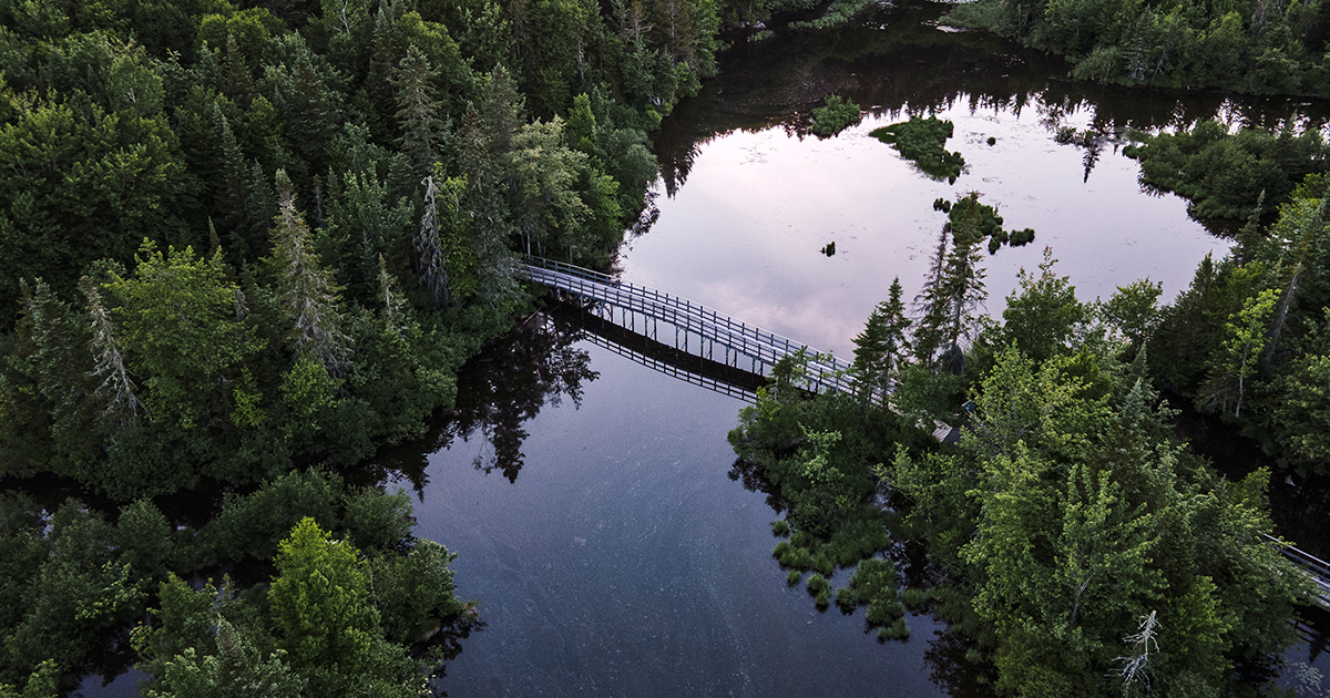 La nature, puissante alliée pour atténuer les changements climatiques et s'y adapter